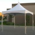 Rental store for TENT 10X10 SQUARE PEAK in Waynesboro VA
