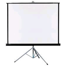 Where to find SCREEN 70  X 70 in Waynesboro